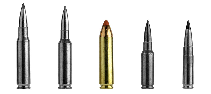 The .450 Bushmaster cartridge is a real big bore thumper for your AR-15, perfect for hunting deer.